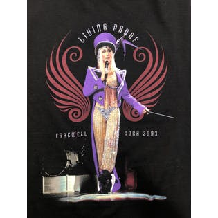 Cher Living Proof Farewell Tour Graphic T-Shirt by Tennessee River