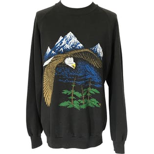 80's Black Mountain Graphic Sweatshirt by Jerzees