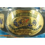 another view of Deadstock Sealed World Wrestling Federation Intercontinental Title Championship Belt Replica