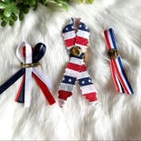 another view of Patriotic Ribbon Brooches Bundle