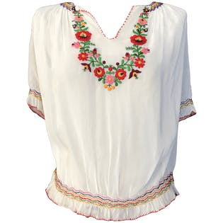 Sheer Blouse with Floral Embroidery by Hand Embroidery Fast Colour